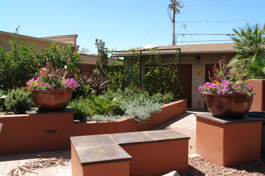 Myeres Landscape Project In Tucson
